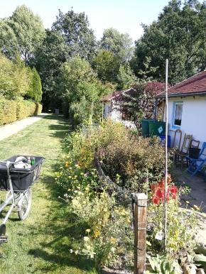 Sommer 2018; Vorgarten mit Blumenwiese